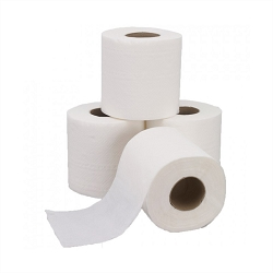 2-ply Toilet Paper (96 rolls)